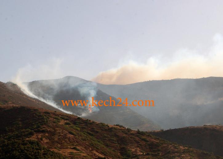 حريق مهول يأتي على 30 هكتار بجماعة تغدوين