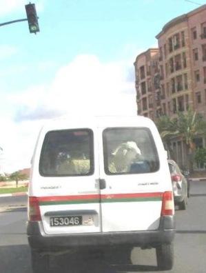 الإدارة العامة للأمن الوطني تستدعي رئيس الدائرة الأمنية 11 على خلفية صورة تم تداولها بالفيس بوك