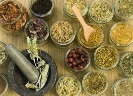 مراكش .. التوقيع على اتفاقيتين لتسويق الأعشاب العطرية والطبية ومواكبة الضيعات الفلاحية بإقليم الحوز