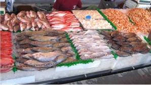 إيقاف وكيلين للمداخيل بسوق السمك بتهمة اختلاس أموال عمومية في مراكش