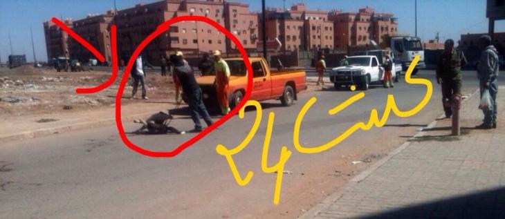 عاجل: عمال الإنعاش يشنون حملة على الكلاب الظالة بالمحاميد7 + صورة حصرية