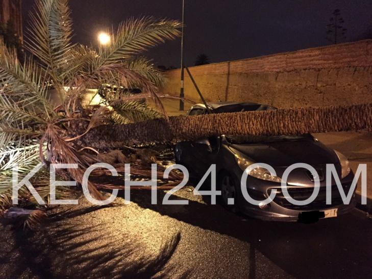 للمراكشيين فقط كونو على بال : صورة حصرية لمخلفات اول يوم عاصفي بمراكش