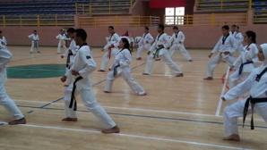 بالصور: جمعية شمس المسيرة تنظم تدريبا في رياضة التايكواندو بقاعة الزرقطوني بمراكش