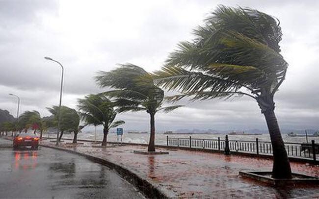 نشرة انذارية: أمطار رعدية قوية ابتداء من يوم غد الخميس بهذه المناطق