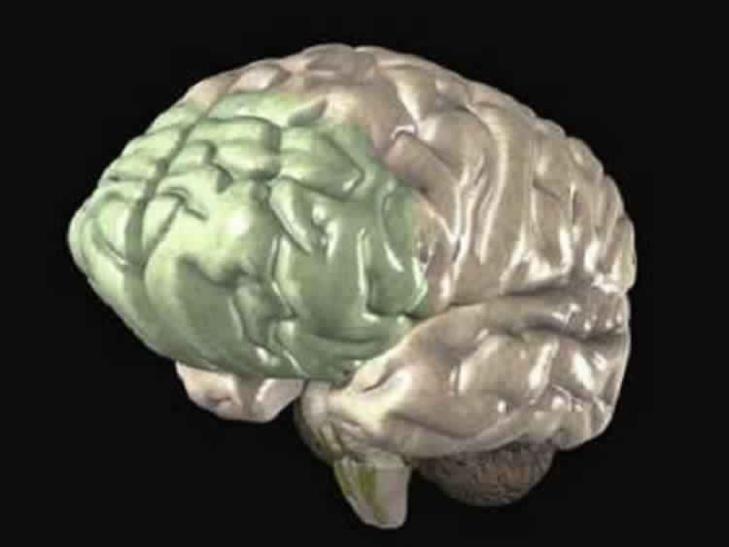 الكآبة تسبب التهابات في الدماغ