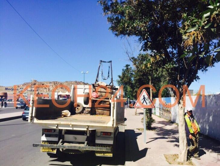 السلطة المحلية تطارد أصحاب العربات المجرورة بحي الإزدهار بمراكش