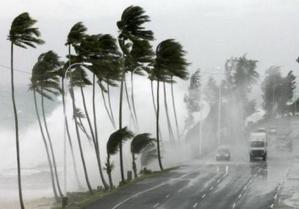 الأرصاد الجوية: زخات مطرية مصحوبة بعواصف رعدية بهذه المناطق