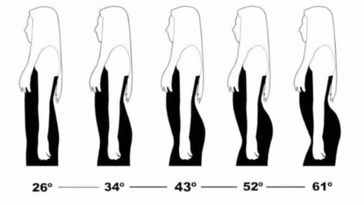 دراسة حول تاريخ الذوق الذكري في انحناءات جسد المرأة
