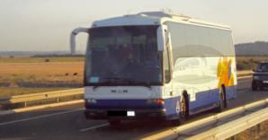 حافلة للمسافرين تنجو من حادثة سير خطيرة بسبب قطيع من الإغنام بجماعة لوداية ضواحي مراكش