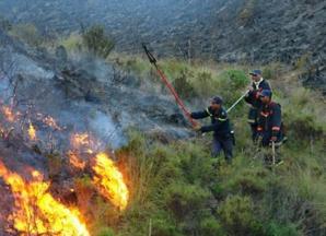 حريق يلتهم ازيد من 10 هكتارات من الاراضي الفلاحية بلفقيه بنصالح