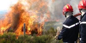 النيران تلتهم نحو 50 هكتارا من المساحات الغابوية بإقليم تطوان