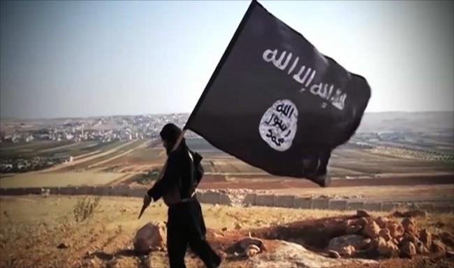 تنظيم الدولة الإسلامية يعدم عالم آثار في تدمر