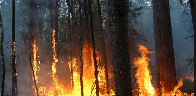 عاجل: اندلاع حريق مهول بضيعة فلاحية على الطريق الوطنية رقم 8 بين لوداية ومراكش