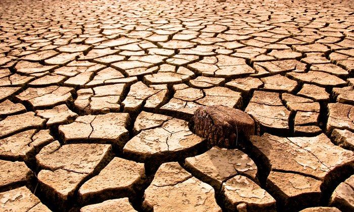 الجفاف يطل برأسه على البوادي والفلاحون ينتظرون