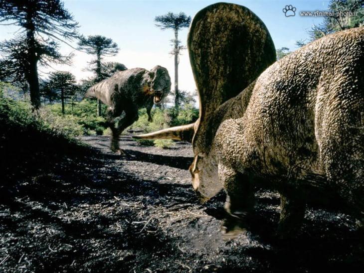 اكتشاف حيوان متوحش عتيق يشبه الديناصورات في في كينيا