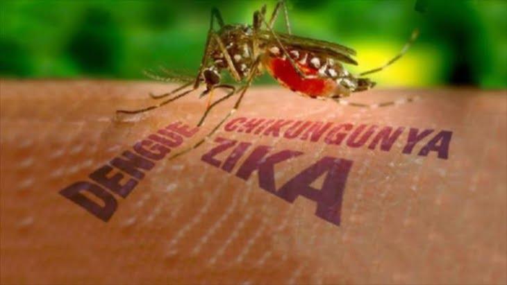 انتشار فيروس زيكا يمنع تقبيل الغرباء لهذا السبب
