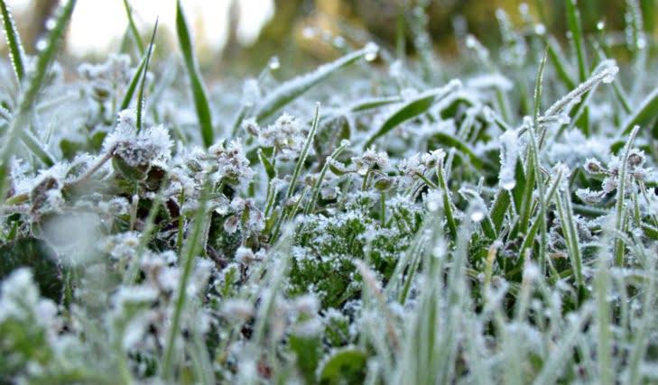 جليد وجريحة وأمطار متفرقة في توقعات أحوال الطقس غدا الأحد بهاته المناطق من المملكة