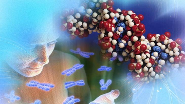 علماء: إيقاف عمل جين واحد فقط يقلل من احتمال نوبة قلبية بنسبة 50%