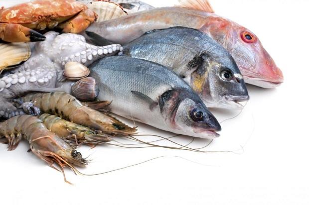 في السمك مواد تدمر جهاز المناعة وفق دراسة جديدة