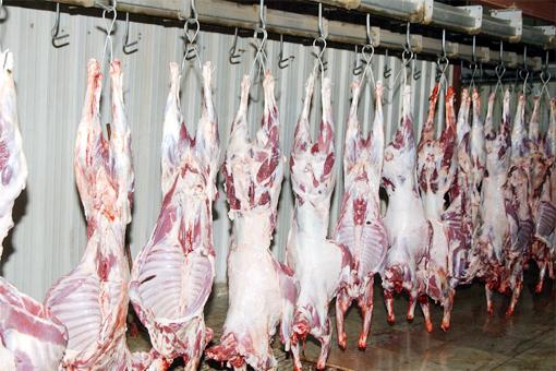 حصري: حجز أزيد من 350 كيلو من لحوم الذبيحة السرية بمحل للجزارة بحي المسيرة بمراكش