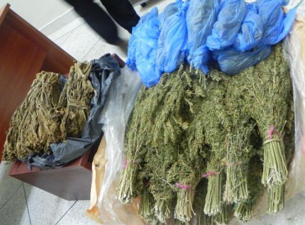 مصالح الامن تضبط 430 كلغ من مخدر ورق الكيف وحوالي 43 كلغ من مادة