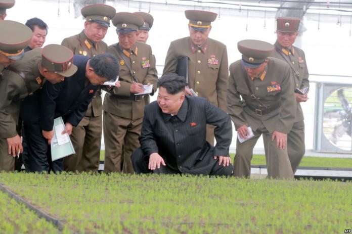 خالة زعيم كوريا الشمالية المختبئة في نيويورك تكشف أسرار مثيرة عن حياته