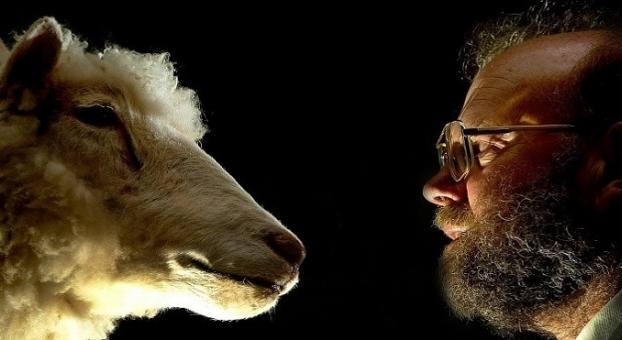 الذكرى الـ20 لاستنساخ النعجة دوللي أول حيوان مستنسخ في التاريخ