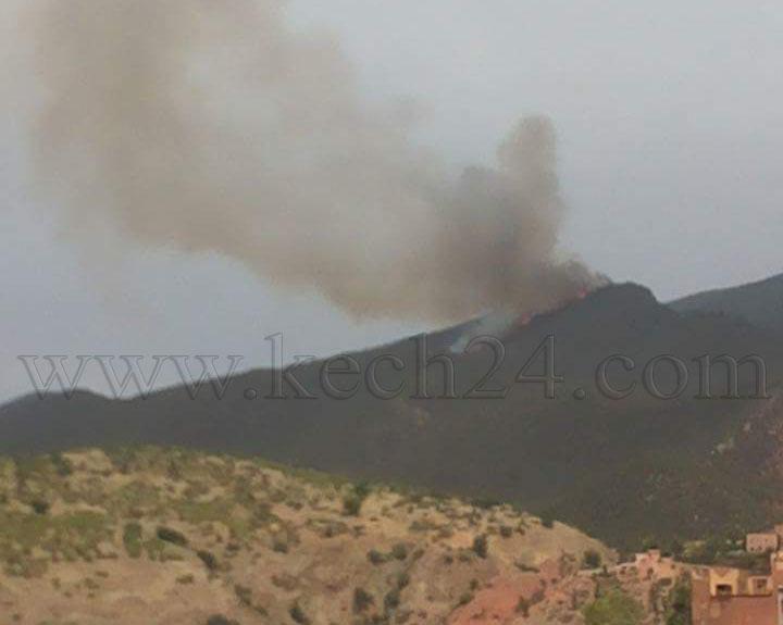 عاجل : السيطرة على حريق بغابة بإقليم الحوز