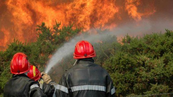 السيطرة على حريق أتى على حوالي 352 هكتارا من المساحة الغابوية بالناظور
