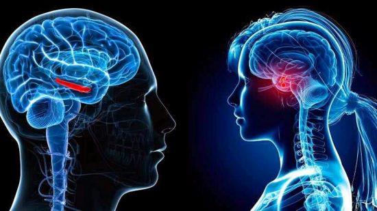 العلاقة الجنسية تجعل الإنسان أكثر ذكاءً حسب دراسة طبية جديدة