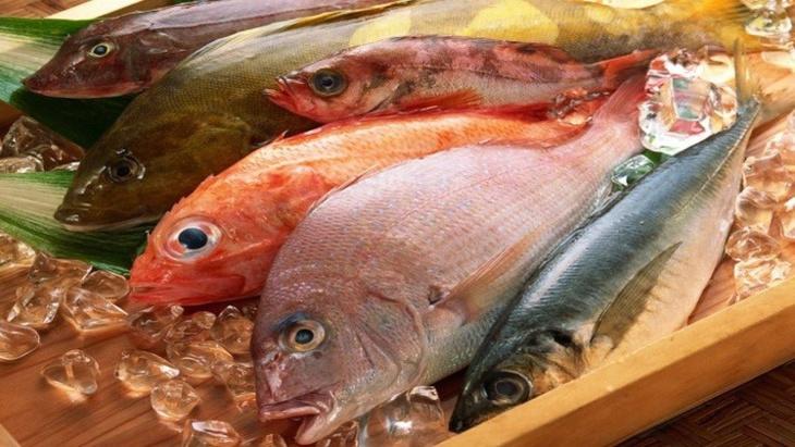 هذه فوائد تناول الأسماك الدهنية
