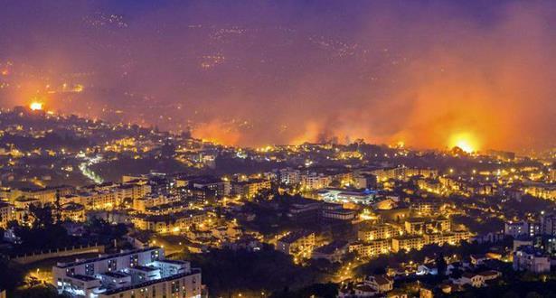 3213 حريقا في عشرة أيام دمرت نحو 100 ألف هكتار من الغابة في البرتغال
