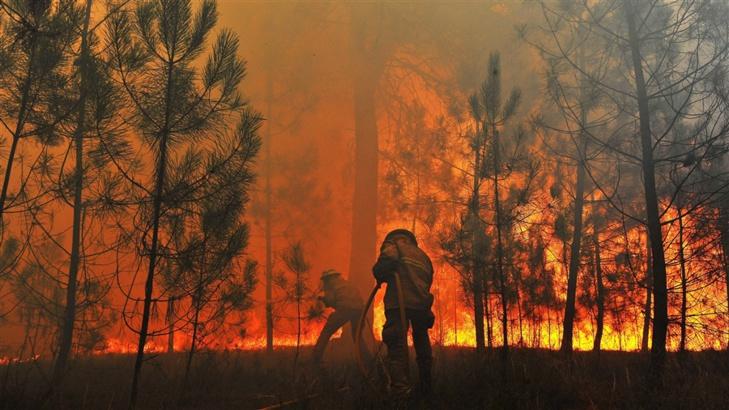 إخماد حريق غابوي تسبب في إتلاف نحو 7 هكتارات