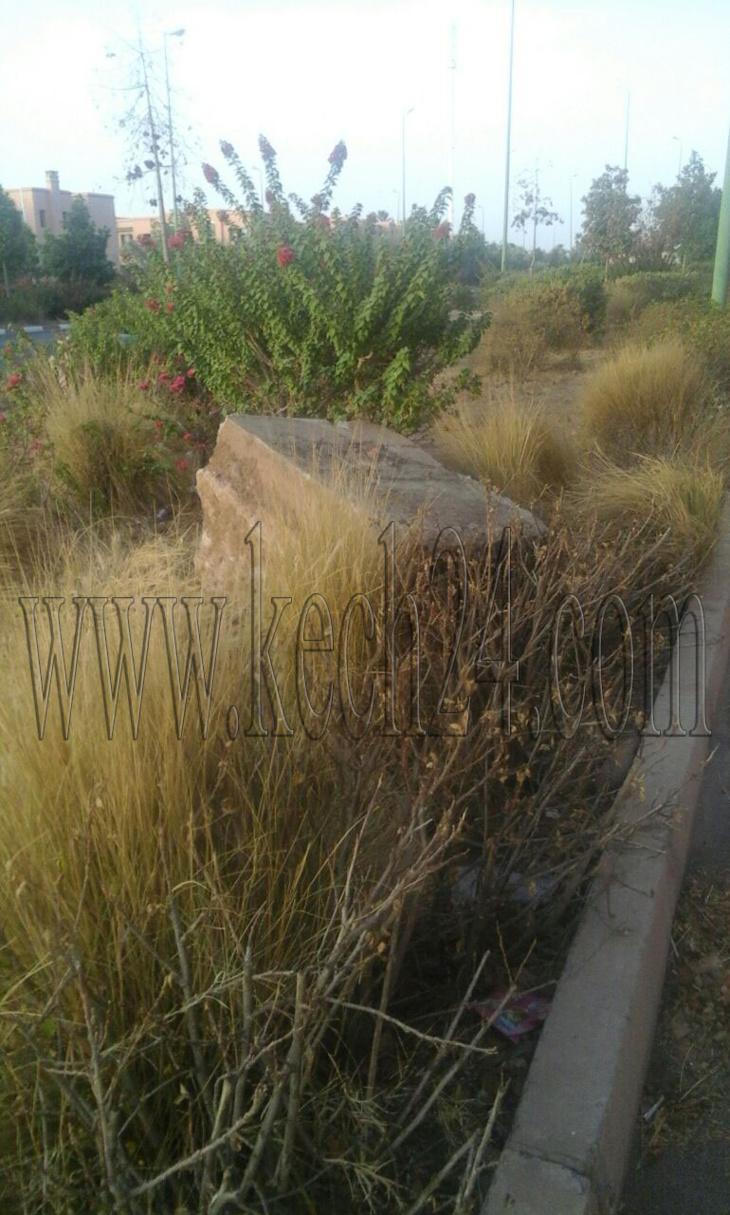 متنفس أخضر بحي العزوزية بمراكش يحتضر على بعد أسابيع قليلة من قمة المناخ