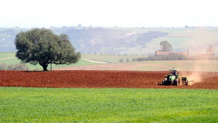ارتفاع المساحة الصالحة لزراعة على المستوى الوطني