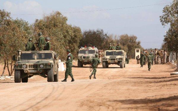 الجيش المغربي يعتقل ضباط جزائريين وانفصاليين جنوب المملكة