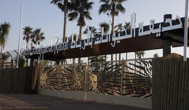 افتتاح متحف بالحديقة الوطنية للحيوانات بالرباط