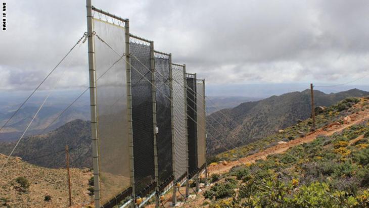 ابتكار يحل مشكلة الجفاف في الصحراء المغربية
