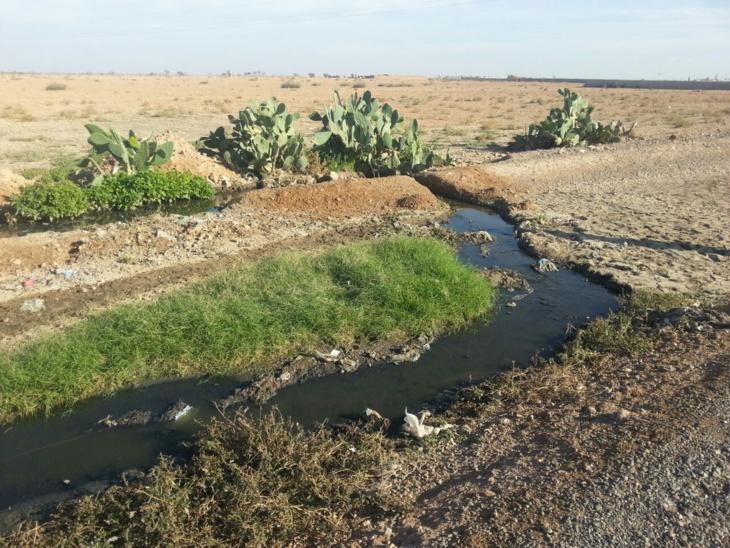 حقوقيون يدقون ناقوس الخطر من كارثة بيئية بسيد الزوين بسبب إغلاق الواد الحار لاستغلال