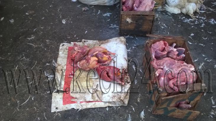 عاجل: المكتب الجماعي لحفظ الصحة بمراكش يضبط دجاج نافق معروض بسوق العزوزية + صورة حصرية