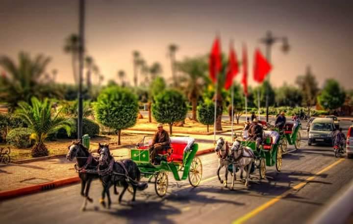 هذا حجم السياح الذين زاروا مدينة مراكش سنة 2016