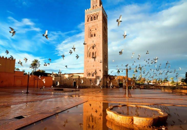 وكلاء أسفار بمنطقة شنغهاي بالصين يكتشف المؤهلات السياحية لمراكش
