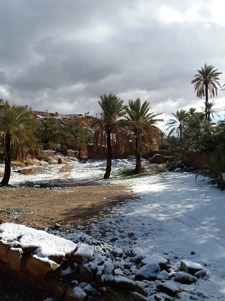 ألبوم صور: الثلوج ترسم لوحات جميلة في مشاهد نادرة بالسهول والواحات والمدن المغربية