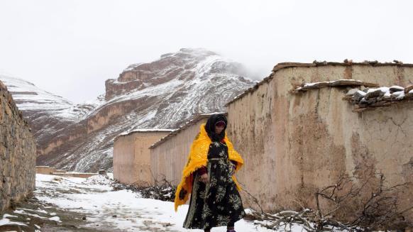 السلطات العمومية تواصل تدخلاتها لتقديم الدعم والمساعدة للمواطنين لمواجهة موجة البرد