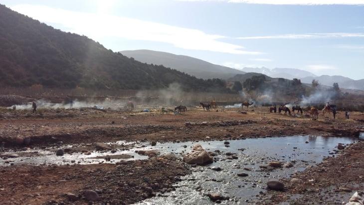 مجزرة جماعة آسني تلوث واد غيغاية وجمعويون يطالبون عامل إقليم الحوز بالتدخل