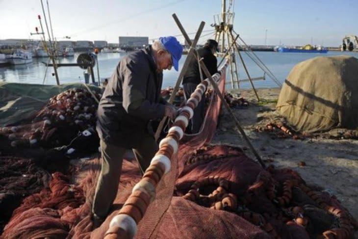 فضيحة حصص الصيد البحري أبطالها سياسيون يمتلكون تراخيص مزورة للصيد
