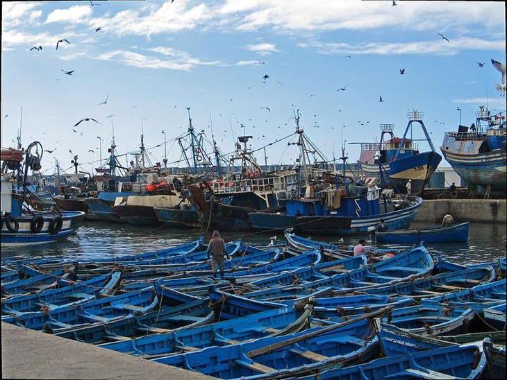 إطلاق عملية اقتناء وتجهيز قوارب الصيد بتقنية تحديد الهوية بموجات الراديو