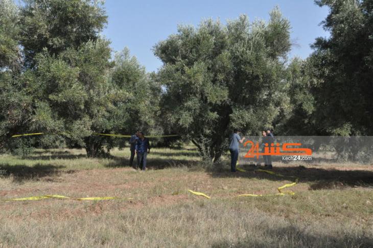 محزن: مصرع أربعيني بعد سقوطه من شجرة زيتون أثناء جني المحصول بنواحي مراكش