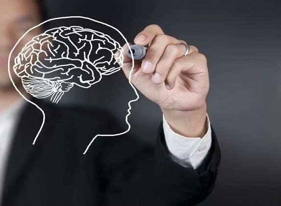علماء يكتشفون سبب شيخوخة الدماغ وانخفاض القدرات الفكرية