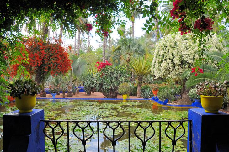 متطوعون يسعون بشغف للحفاظ على الحدائق في مراكش